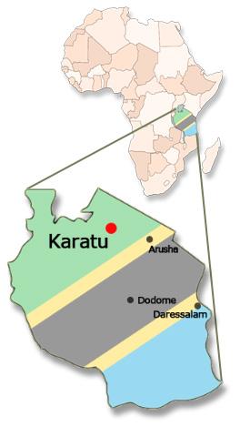 Karte von Afrika und Tansania