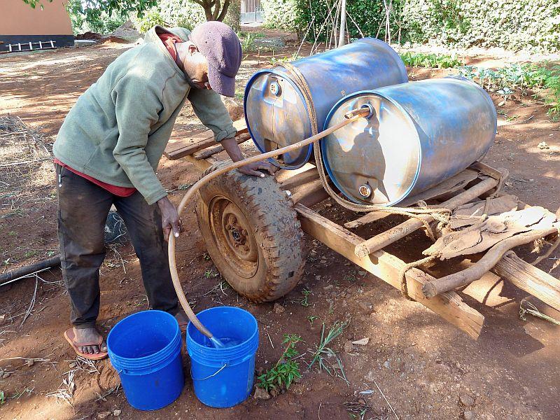 Wassertransport mit Ochsenkarren