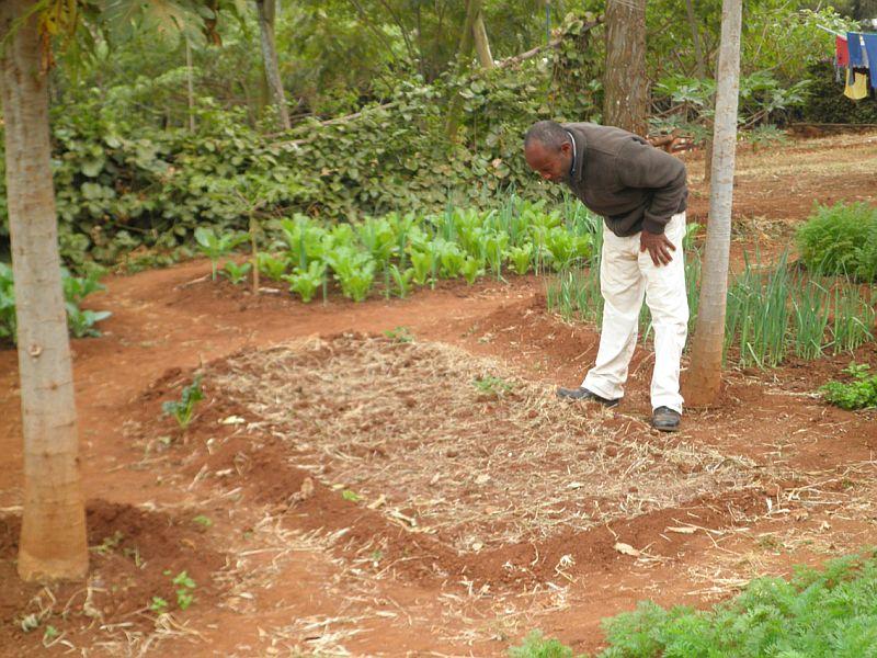 Begutachtung des Gartens